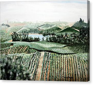 Vineyard On A Foggy Morning Canvas Print by Vickie Wright