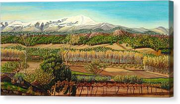 Vineyard Valley In The Sierra Nevada Surroundings Canvas Print by Angeles M Pomata