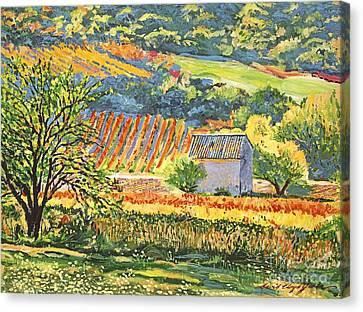 Vineyards Of Provence Canvas Print by David Lloyd Glover