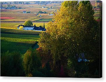 Winemaking Canvas Print - Vineyards, Saint-emilion, Gironde by Panoramic Images