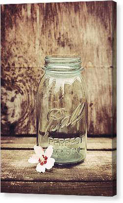 Vintage Ball Mason Jar Canvas Print by Terry DeLuco