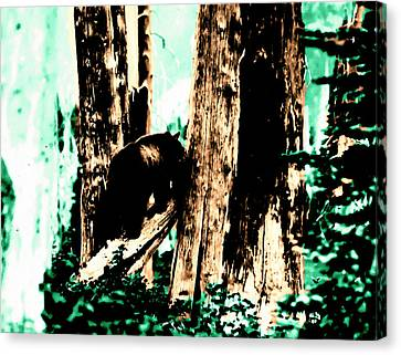 Canvas Print featuring the photograph Vintage Bear In The Mount Rainier Forest Early 1900 Era... by Eddie Eastwood