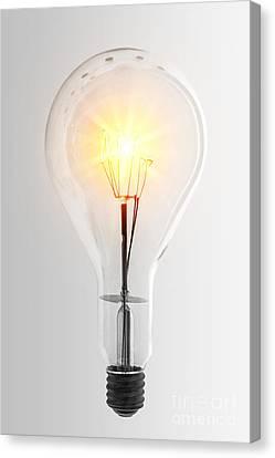 Components Canvas Print - Vintage Bulb by Carlos Caetano