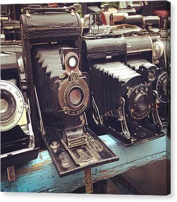 Vintage Cameras Canvas Print by Sarah Coppola