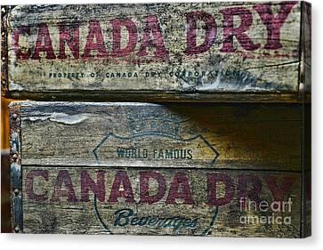 Vintage Canada Dry Canvas Print by Paul Ward