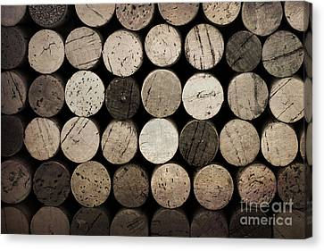 Syrah Canvas Print - Vintage Corks by Jane Rix