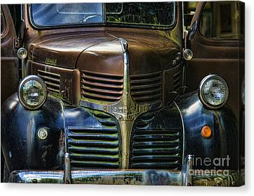 Vintage Dodge Canvas Print by Mark Newman