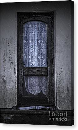 Vintage Door Canvas Print