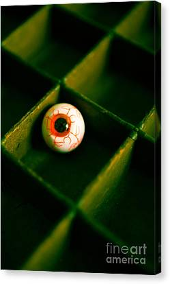 Vintage Fake Eyeball Canvas Print by Edward Fielding