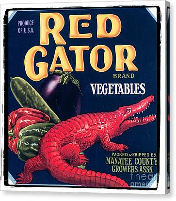 Vintage Florida Food Signs 6 - Red Gator Brand - Square Canvas Print by Ian Monk