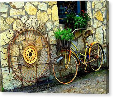 Antique Store Hay Rake And Bicycle Canvas Print by ARTography by Pamela Smale Williams