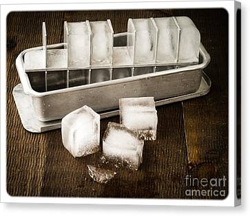 Vintage Ice Cubes Canvas Print by Edward Fielding