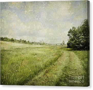 Country Scene Canvas Print - Vintage Landscape by Jelena Jovanovic