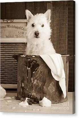 Bath Canvas Print - Vintage Laundry by Edward Fielding