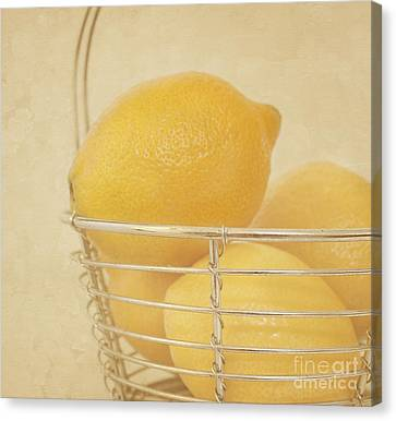Sour Canvas Print - Vintage Lemons Still Life by Kim Hojnacki