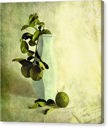 Vintage Limes Canvas Print by Linde Townsend