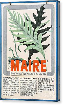 Vintage Market Sign 1 - Papeete - Tahiti - Maire - Fern Canvas Print by Ian Monk