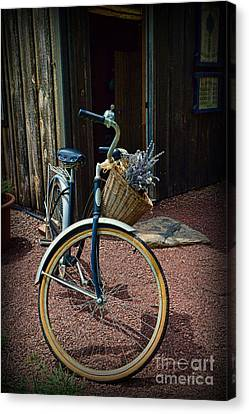 Vintage Schwinn And The Barn Door Canvas Print