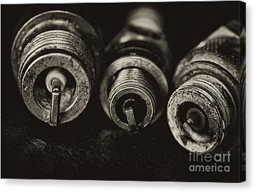 Vintage Spark Plugs  Canvas Print by Wilma  Birdwell