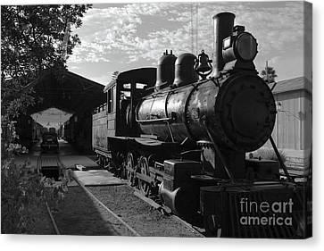 Rail Siding Canvas Print - Vintage Steam Engine At Tacna by James Brunker