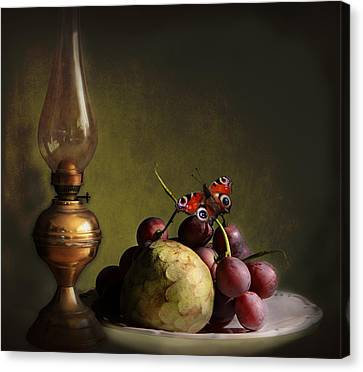 Vintage Still Life Butterfly And Fruits Canvas Print