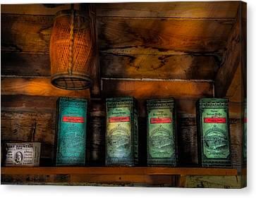 Vintage Tea Leaves Canvas Print by Paul Freidlund
