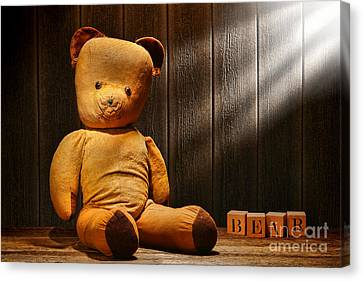 Vintage Teddy Bear Canvas Print by Olivier Le Queinec