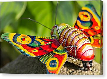 Vintage Tin Toy Butterfly Canvas Print by Palatia Photo