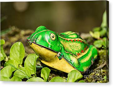 Vintage Tin Toy Frog Sitting In The Grass Canvas Print by Palatia Photo