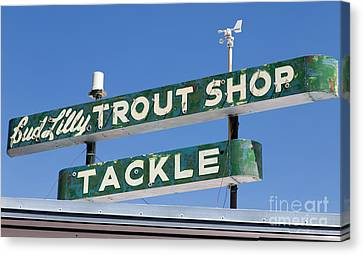 Vintage Trout Shop Sign West Yellowstone Canvas Print by Edward Fielding