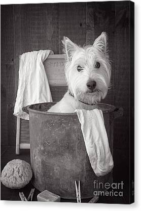 Vintage Wash Day Canvas Print by Edward Fielding