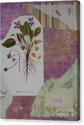 Viola Canvas Print by Tamyra Crossley