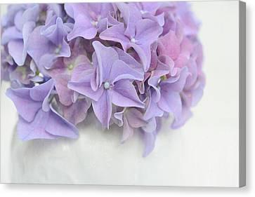 Violet Hydrangea Canvas Print by Cora Niele