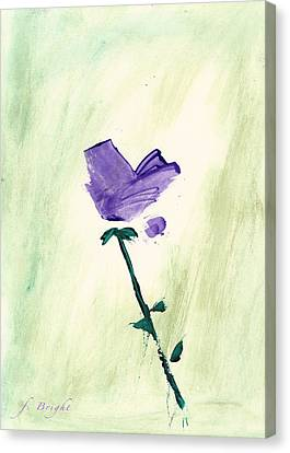 Violet Solo Canvas Print by Frank Bright