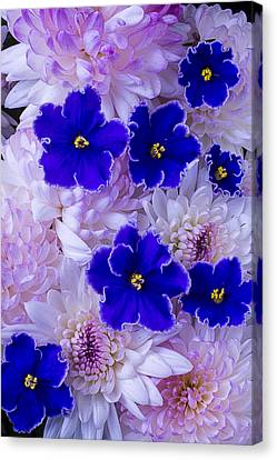 Violets And Mums Canvas Print by Garry Gay