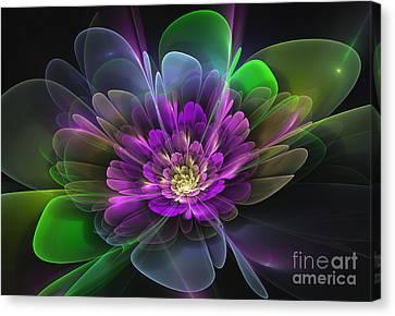 Violetta Canvas Print