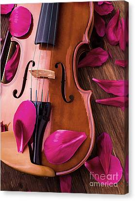 Violin And Flower Petals Canvas Print by Edward Fielding