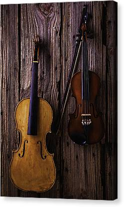 Concert Images Canvas Print - Violin And Viola by Garry Gay