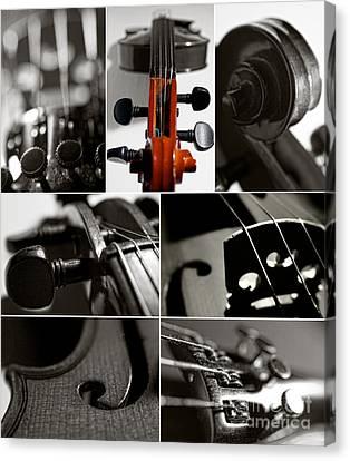 Violin Collage Canvas Print