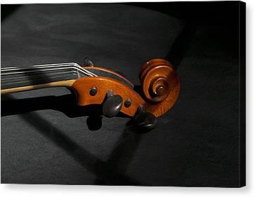 Violin In Shadow Canvas Print by Mark McKinney