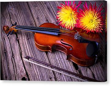 Violin With Spider Mums Canvas Print by Garry Gay
