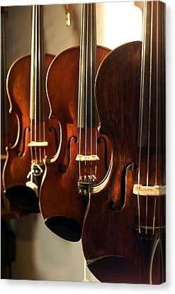 Violins Vertical Canvas Print by Jon Neidert
