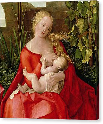 Virgin And Child Madonna With The Iris, 1508 Canvas Print