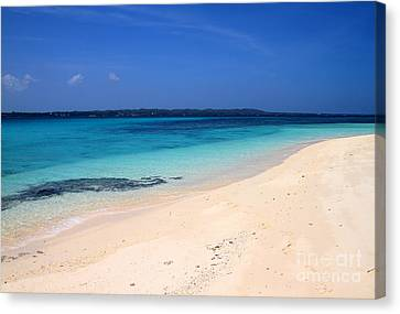 Canvas Print featuring the photograph Virgin Island Cebu by Joey Agbayani
