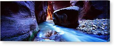 Virgin River At Zion National Park Canvas Print
