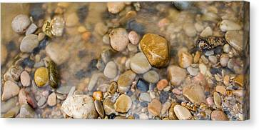 Virgin River Pebbles Canvas Print by Adam Pender