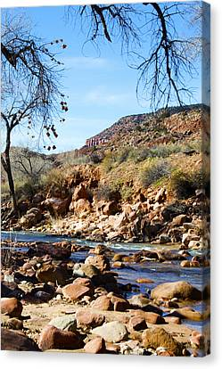 Virgin River Zion National Park Canvas Print by Barbara Snyder