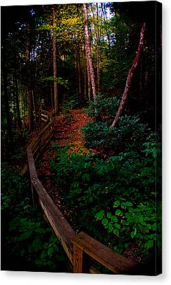 Canvas Print featuring the photograph Virginia Morning by Jon Emery