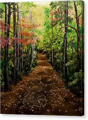Virginia Path Canvas Print by Jessica Tookey
