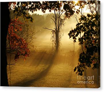 Canvas Print featuring the photograph Virginia Sunrise by Carol Lynn Coronios